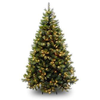 How To Preserve A Christmas Tree Useful Tips And Information
